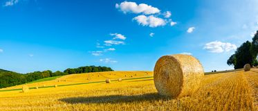 Hay bales on a field. Landscape in summer with hay bales on a field and blue sky with clouds in the background royalty free stock photo