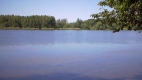 Landscape summer Lake. Full HD stock video footage