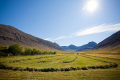 Landscape of summer in the mountains of Iceland Stock Image