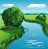 Landscape. Summer landscape with river and tree Royalty Free Stock Photography