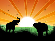 Landscape with sun and elephants Royalty Free Stock Image