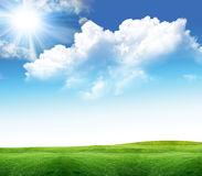 Landscape with sun and grass Stock Image