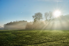 Landscape with sun rays through fog Stock Photography