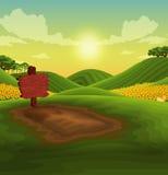 Landscape sunflower Stock Photo