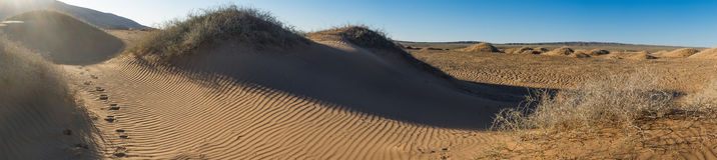 Landscape of sunlit desert. Beautiful landscape of sunlit desert against the sky Royalty Free Stock Images