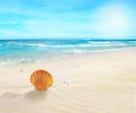 Landscape on sunny beach. Royalty Free Stock Photography