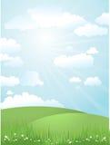 Landscape on a sunny day. Grassy landscape on a sunny day Stock Images
