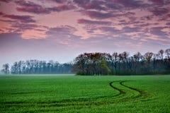 Landscape during sunrise Stock Photo