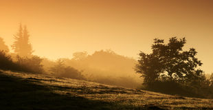 Landscape at sunrise Royalty Free Stock Photography