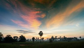 Landscape with saturation sky in sunrise. Landscape in sunrise and cloud sky with saturation color and tree in shade stock images