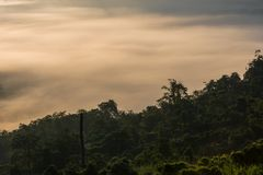 Landscape of sunrise on Mountain at Doi Luang Chiang Dao stock photos