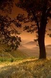 Landscape Sunset Stock Photography