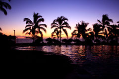 Landscape sunset on the beach with palm trees Stock Photo
