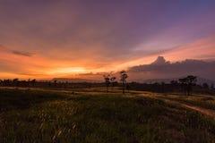 Landscape sunset. Beautiful landscape Meadow Sunset Mountain Stock Photo