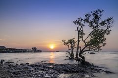 Landscape of Sunset at Chonburi coast in early winter stock photos