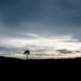 Landscape of sunset Royalty Free Stock Images