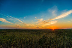 Landscape sunset over field Stock Photography