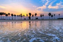 Landscape sunset and Palm Tree at Phetchaburi , Thailand Stock Photography