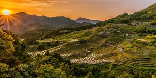 Landscape, Sunset, Rice Terraces Royalty Free Stock Photography