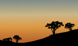 Landscape at sunset with trees Stock Image