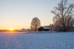 Landscape in sunset Stock Image