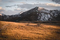 Landscape, sunset view at Independence Pass near Aspen, Colorado. royalty free stock photography