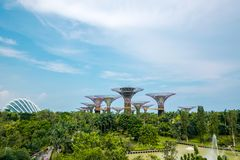 Landscape of Super trees at Gardens by the Bay, Singapore. stock photography
