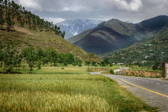 Landscape of Swat Pakistan Royalty Free Stock Images