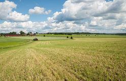 Landscape in Sweden Royalty Free Stock Images