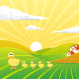Landscape with Sweet Chicks. Illustratio of an Evening Landscape with Sweet Chicks Stock Photos