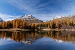 Landscape in the Swiss Alps Stock Photography