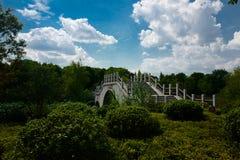 The landscape of Taihu lake. Wuxi, China royalty free stock image