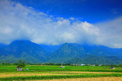 Landscape of Taitung in Taiwan Stock Image