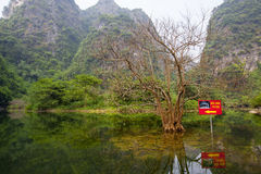 Landscape of Tam Coc national park Stock Photography