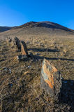 Row of ancient stones in Tamgaly Royalty Free Stock Photos