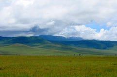 Landscape of tanzania Stock Image