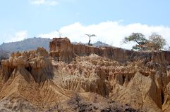 Landscape of Tanzania Stock Images