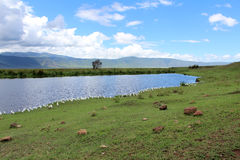 Landscape in Tanzania Royalty Free Stock Images