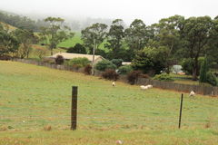 Landscape of Tasmania Country side. Cloudy Beautiful Tasmania country side village in the town of Sorell to Port Arthur Royalty Free Stock Photography