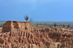 Landscape of the Tatacoa desert, in Neiva, Colombia Stock Photos