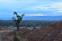 Landscape of the Tatacoa desert, in Neiva, Colombia. Landscape of the Tatacoa desert, one of the touristic destinations in Colombia stock photos
