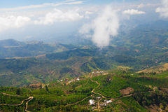 Landscape of tea plantations in Haputale, Sri Lanka Stock Image