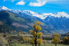 Landscape of Telluride Stock Photography