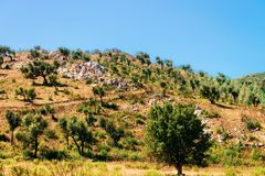 Landscape of Teulada Cagliari Sardinia island. Landscape of Teulada, Cagliari province, Sardinia, Italy royalty free stock photography