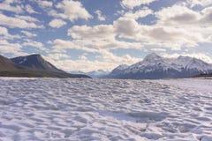 Textured Icy Abraham Lake stock photos