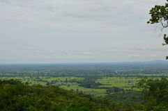 Landscape of Thailand cultivate Royalty Free Stock Images