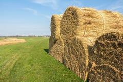 Landscape with thatch sheaf on farmland Stock Image