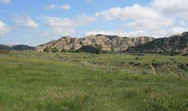 Landscape, Theo. Roosevelt NP Stock Images