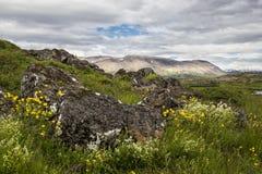 Landscape in Thingvellir Royalty Free Stock Images