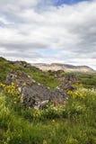 Landscape in Thingvellir Royalty Free Stock Image